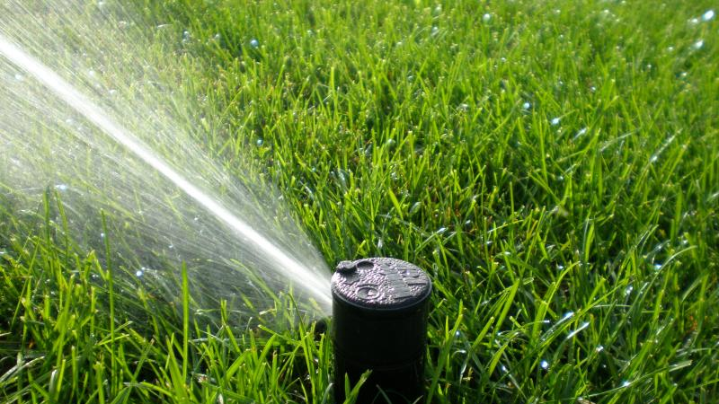 turfgrass irrigation